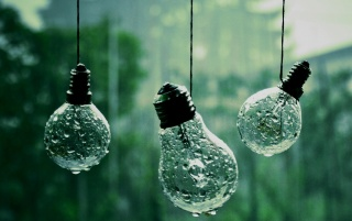 Previous: Rain on Lightbulbs