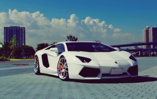 White Lamborghini Aventador Chrome Rims wallpapers and stock photos