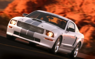 Ford Shelby GT white wallpapers and stock photos