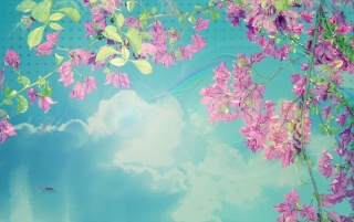 Spring Sky wallpapers and stock photos