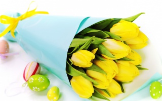 Yellow Tulips and Easter Eggs wallpapers and stock photos