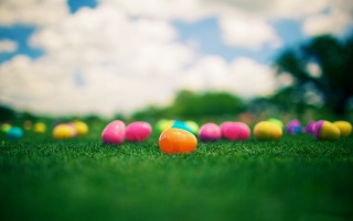 Coloured Easter Eggs wallpapers and stock photos