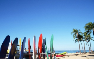 Surf Boards wallpapers and stock photos