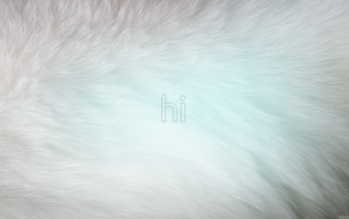 Typography and Fur wallpapers and stock photos