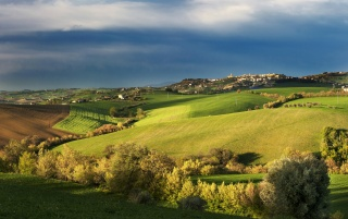 Previous: Tuscany Spring Landscape
