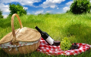 Summer picnic wallpapers and stock photos