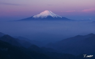 Pink Mt. Fuji wallpapers and stock photos