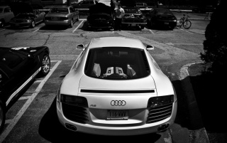 Random: White Audi R8 Rear Monochrome