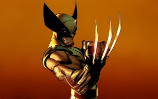 Next: Wolverine Artwork