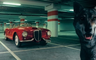 Lancia Aurelia wallpapers and stock photos