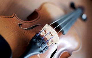 Violin Macro wallpapers and stock photos