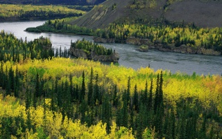 Yukon River wallpapers and stock photos