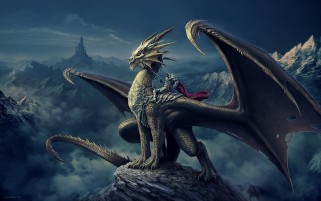 Dragon Rider wallpapers and stock photos