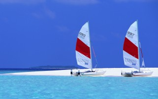 Sailing Boats on Exotic Beach wallpapers and stock photos