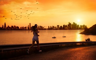 Morning Run wallpapers and stock photos