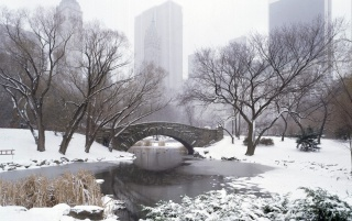 Central Park in winter wallpapers and stock photos