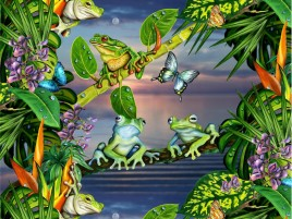 Frog Invasion wallpapers and stock photos