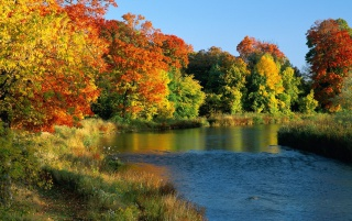 Credit River Ontario wallpapers and stock photos