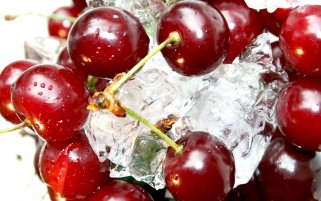 Cherries on Ice wallpapers and stock photos