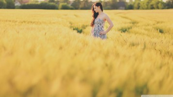 Girl in the Crop Fields wallpapers and stock photos