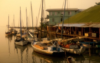 Random: Misty Harbor Belize