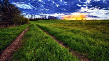 Green Grass Road wallpapers and stock photos