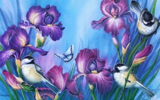Purple Iris & Birds wallpapers and stock photos