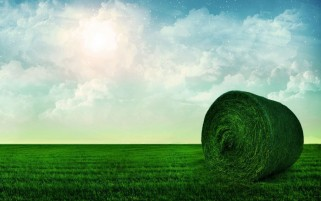 Grass Green Bale wallpapers and stock photos