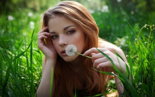 Redhead with Dandelion wallpapers and stock photos