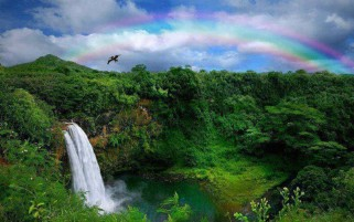 Delicate Rainbow Beauty wallpapers and stock photos