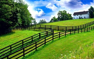 Summer Farm wallpapers and stock photos