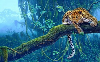 Jungle Tiger wallpapers and stock photos