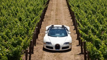 Random: Bugatti Veyron in Vineyard