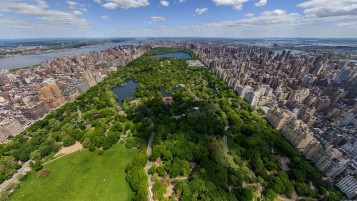 Random: Central Park New York Two
