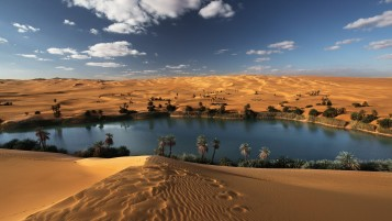 Oasis Libyan Desert wallpapers and stock photos