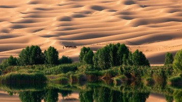 Dazzling Desert wallpapers and stock photos