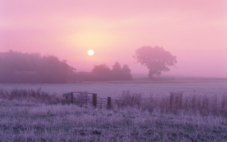 Frosty Farmland wallpapers and stock photos