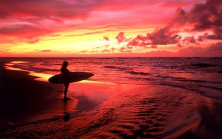 Surfer at Twilight wallpapers and stock photos