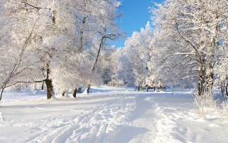 Small Winter Way wallpapers and stock photos