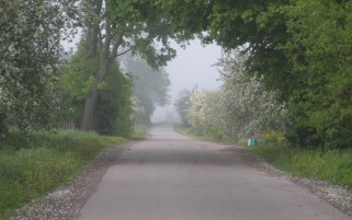 Random: Lovely Village Road