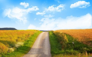 Lovely Nature Road wallpapers and stock photos