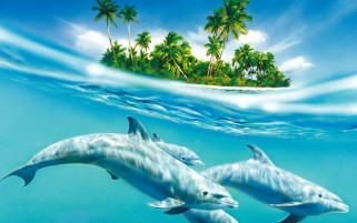 Dolphins & Island wallpapers and stock photos