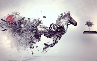 Random: Surreal Zebra