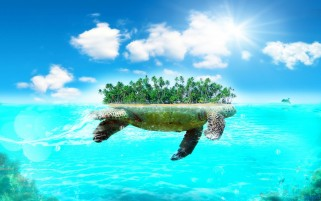Turtle Island wallpapers and stock photos