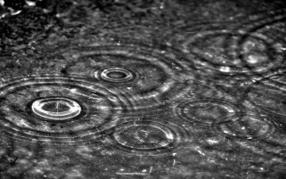Rain Drops wallpapers and stock photos