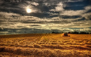 Northern Ireland Harvest wallpapers and stock photos