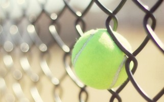 Tenis Kugel wallpapers and stock photos