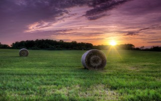Lila Sonnenuntergang Hay Bale Grass wallpapers and stock photos
