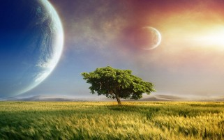 Field Tree & Magical Planets wallpapers and stock photos