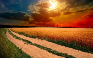 Lovely Sky Field & Road wallpapers and stock photos